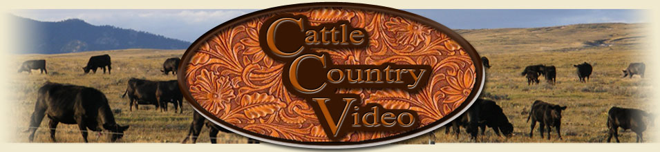Cattle Country Header
